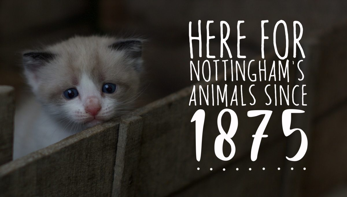 Here for Nottingham's animals since 1875